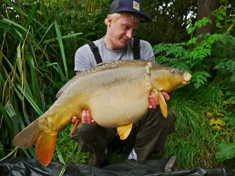 24lb+ mirror carp Furzebray lakes