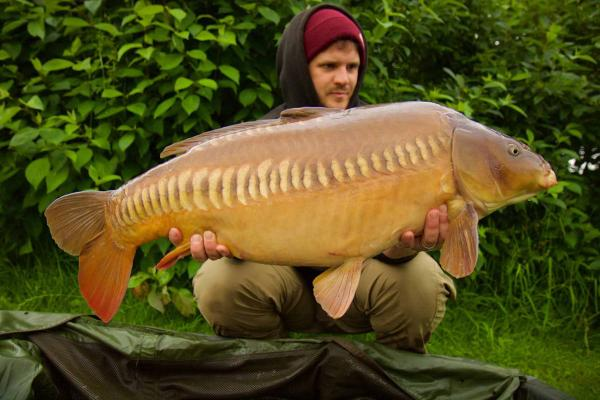 The Big Zip 25.2lb