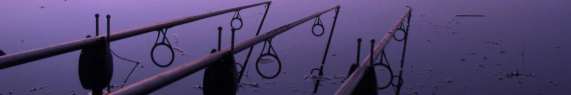 Angling rods